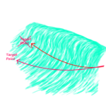 Surfing methods for beginners after takeoff